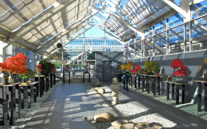 event space at the brooklyn botanic gardens